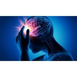 Öğrenme ve Beynimiz